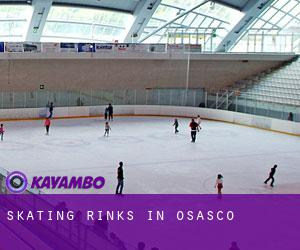 Skating Rinks in Osasco